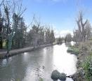 Bridge to Abbey Meadow