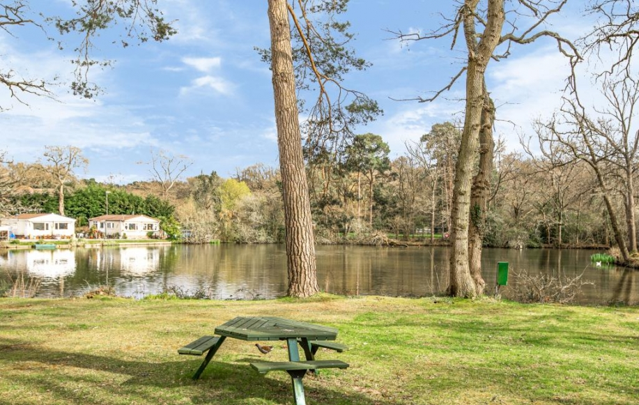 Lake adjacent