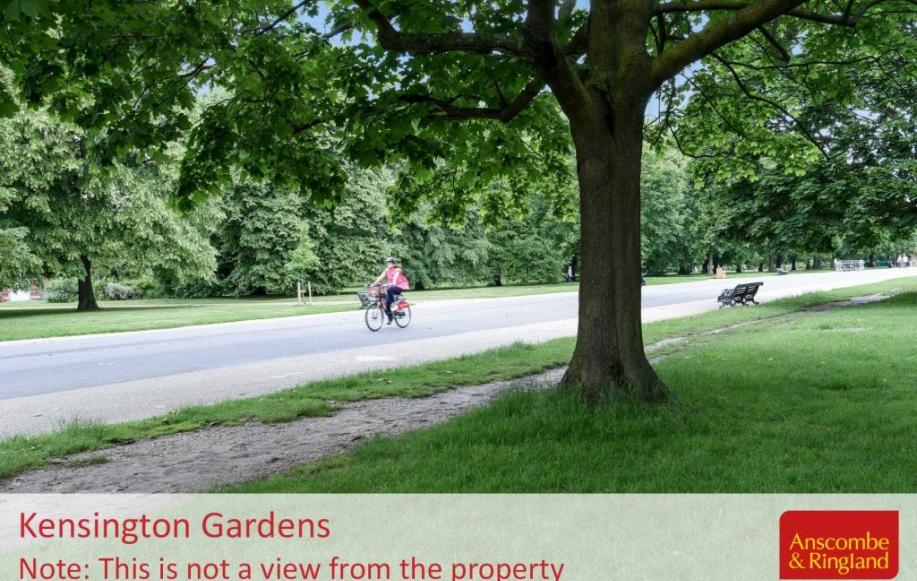 Local Area Shot - Kensington Gardens