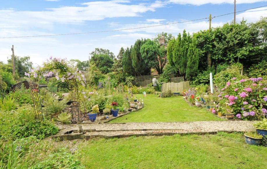 Private mature garden