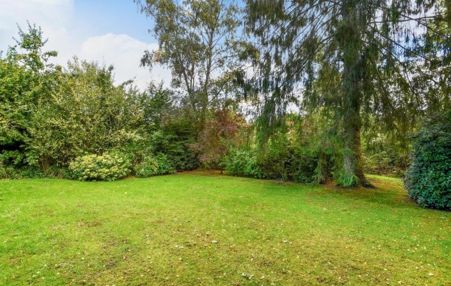 Mature lawned garden