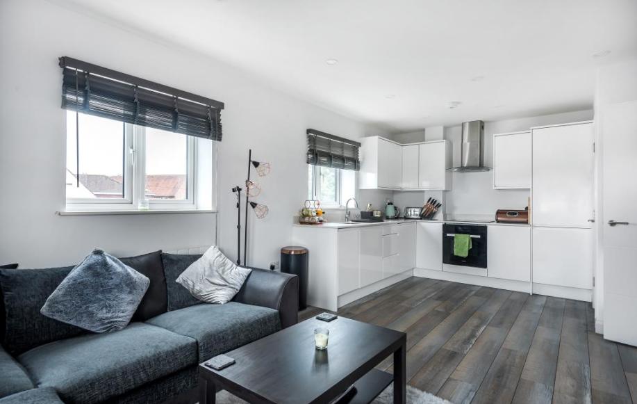 Living / Kitchen Area