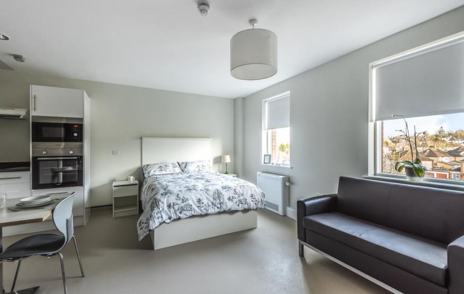 Bedroom/Reception Room