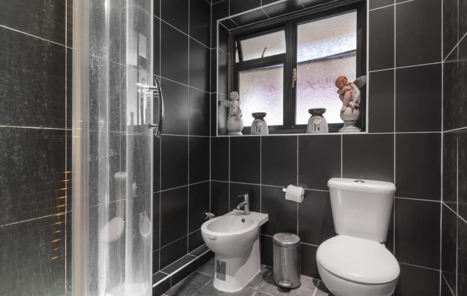 Downstairs Cloakroom/Shower room