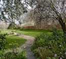 Communal Garden Shot