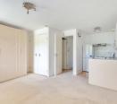 Living Area/Kitchen/Bedroom