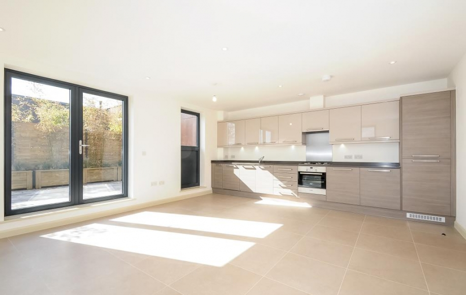 Living Room / Kitchen (2)